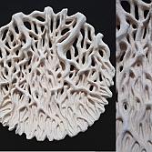 Wortelschaal | keramiek | d.50 cm.